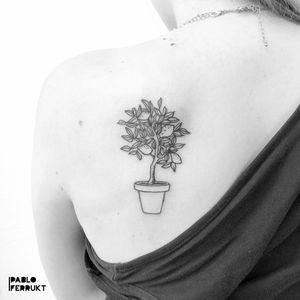 Limon tree for @majatranemose , thanks so much!  Appointments at email@pabloferrukt.com or DM.  #limontree . . . . #tattoo #tattoos #blackwork #ink #inked #tattooed #tattoist #blackworktattoo #copenhagen #købnhavn #33139313 #tatoveriger #tatted #minimalistictattoo #theoldbarbershop #tatts #tats #moderntattoo #tattedup #inkedup #berlin #berlintattoo #tattoosalonen #simplerose #berlintattoos #lineworktattoo #rose  #tattooberlin