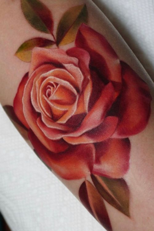 Tattoo by Nina Richards #NinaRichards #realism #rose #flower #floral #plant #leaves #nature #color #painterly