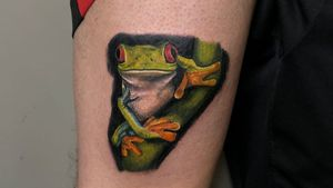 #CharbelleLopes #colorido #colorful #aquarela #watercolor #realismo #realism #sapo #frog