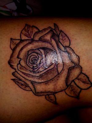 rosa greywash