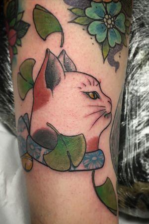 Kitty monmon cat