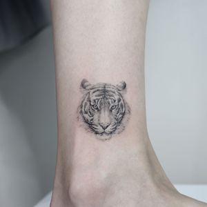 all with singleneedle #tiger #tigertattoo #animaltattoo #finelinetattoo #blackandgreytattoo #blackandgrey #tinytattoo