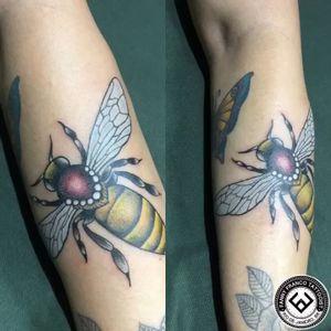 Abelhinha 🐝 🥰 @megawartztattoo  @megaipanema  @fannytattoo  @ericabeatrix  Agendamentos 📲(21)97430-9746 📩 fannyfrancotattoo7@gmail.com #neotraditionaltattoo #abelhatattoo #fannytattoo  #megawartztattoo #colortattoo #traditionaltattooart #electricink #nyctattoo #oslotattoo #españatattoo #colortattoo #electricink #tatuagem #tattoo #tattooed #ink #inked #art #instaart #inspirationtattoo #beetattoo #tattoomagazine #tattoostyle ——•——•——•——