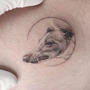 just sleepy puppy #nyctattoo #puppytatto #dogtattoo #greyhound #강아지타투 #newyorktattoo #animaltattoo #tattoo #fineline