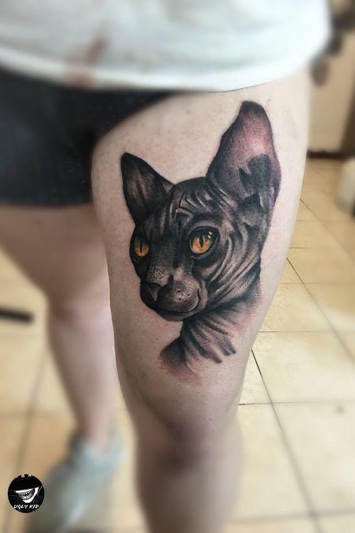 🐱#polska #poland #sphinx #sphinxcat #tattoo #tattoos #tattooed #blackandgreytattoo #cat #cattattoo #blackandgreytattoos #lublin