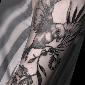 Bird #bird #pajaro #tattoo #botanical # blackwork #oiseau #ave #smooth #fineline #elegant #flower #floweransbird #nature #blackworkers #girly #femenine #sleeve #tattoosleeve #brazo #tatuajebrazo #tatuajefemenino #sleevetattoo