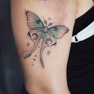 Moth tattoo by Tattoos by Daisy #TattoosbyDaisy #TattoodoApp #TattoodoApptattooartist #tattooartist #tattooart #tattooidea #inspiringtattoo #besttattoo #awesometattoo #arm #butterfly #moth #linework #illustrative