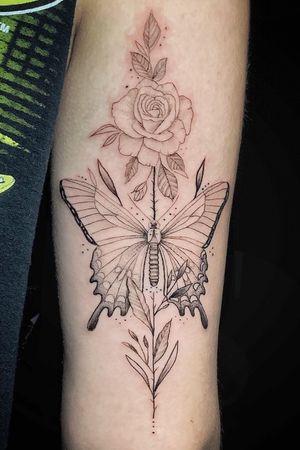#butterfly #fineline