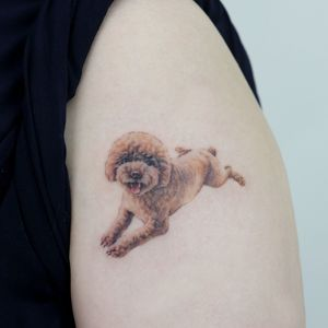 poodle with singleneedle #poodle #puppy #puppytattoo #dog #dogtatto #sanfrancisco #sanfranciscotattoo #nyc #nyctattoo #newyork