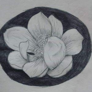 Magnolia flower #Magnolia #flower #blackandgrey