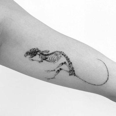 Skeleton tattoo by Youngtatsyou #Youngtatsyou #skeletontattoos #skeletontattoo #skeleton #bones #skull #death #anatomy #anatomical #dinosaur #blackandgrey #fineline #dino #illustrative #arm