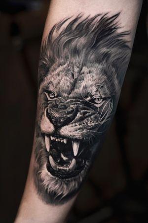 www.josecontrerasart.com - #lion #denton #texas #joseecd #josecontrerasart #josecontreras #dallas #tx