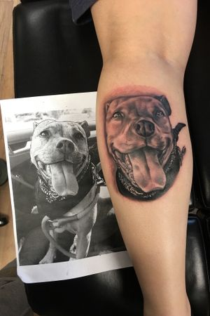 Dog portrait #dog #calftattoo #portrait