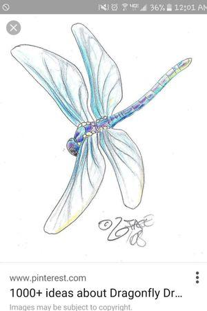 Dragonfly shape