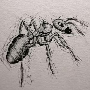 Ant tattoo