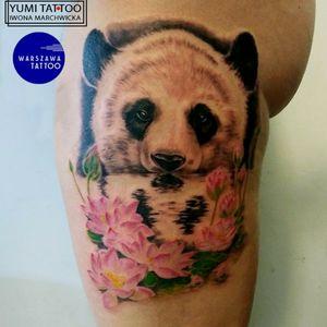 Panda and lotus