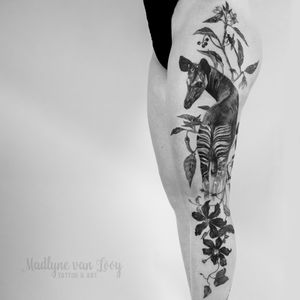 Okapi on a women's leg ❤️ - cause they are my favorites