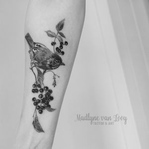 Small charity tattoo for the silent forest campaign