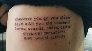 Qualquer lugar que for você sempre levará contigo seis professores: formas, sons, odores, sabores, sensações físicas e atividade mental.