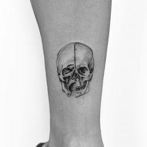 Davinci Skull