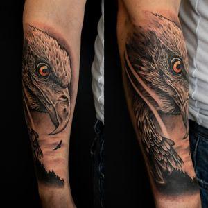Eagle 😍 next part of wild animals sleeve :) Can't wait for another session 🤩 #dktattoos #dagmara #kokocinska #coventry #coventrytattoo #coventrytattooartist #coventrytattoostudio #emeraldink #emeraldinkltd #emeraldinkcoventry #eagle #eagletattoo #realistictattoo #realisticeagletattoo #blackandgraytattoo #tattoo #tattoos #tattooideas #tatt #tattooist #tattooshop #tattooedman #tattooforman #killerbee #immortalinnovations #sabre #pantheraink #radiantink