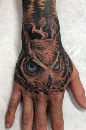 Owl piece. #owl #hand #cypress #oc #realism