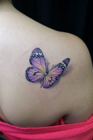 Mariposa / butterfly