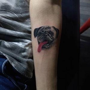 #pug #pets