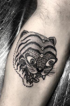 Korean tiger flash