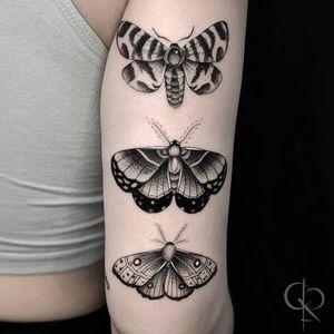 Moths #BlackworkTattoos #LineworkTattoos #dotworktattoos #mothtattoos #delicatetattoos