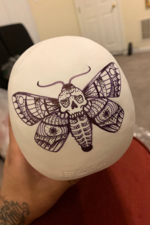 Moth on the back of a skull