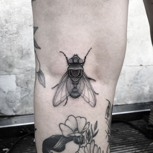 #totemica #tunguska #black #fly #housefly #insect #flyonthewindscreen #tattoo #bukertattoo #breda #netherlands #blackclaw #blacktattooart #tattoolifemagazine #tattoodo