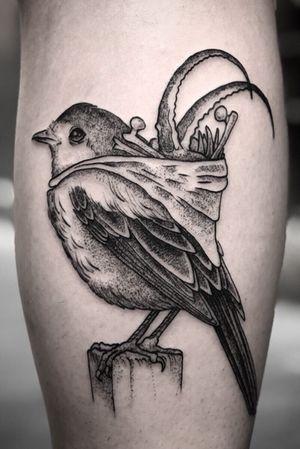 Birdie with a bag of bones