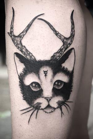 Mercury's Cat