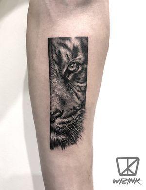 Tiger Black and Grey