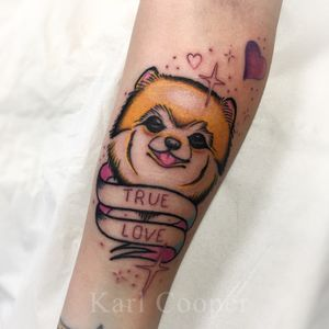 By Karl Cooper @kcoopertattoo #traditional #traditionaltattoo #oldschool #oldschooltattoo #Pomeranian #dog #puppy