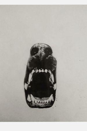 Practicando Realismo🖤🐺✏️ #tete #realism #pencil #art #sketch #realismo #dog #practice
