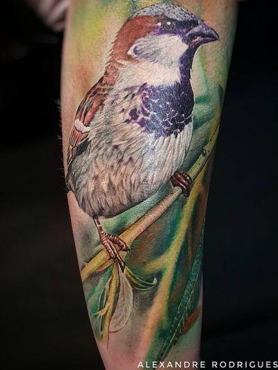 Sparrow color realism #sparrow #sparrowtattoo #birdtattoo #colortattoo #realistictattoo #realism #realism