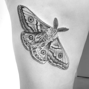 Custom moth design #insecttattoo #mothtattoo #fineline #finelinetattoo #blackwork #blackworktattoo #linework #blackandgrey