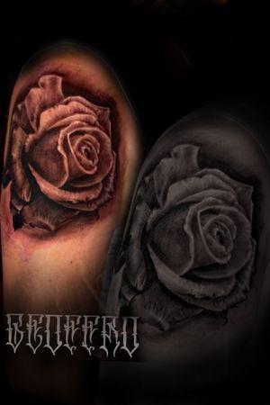 Love doing roses