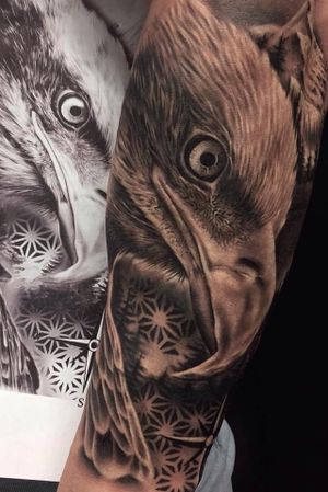 #eagletattoo #realistic #blackandgrey #eagle #stuttgart