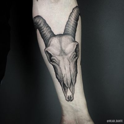 Goat skull. #goat #goathead #goatskull #goattattoo #skulltattoo #dotwork #darkart #darktattoo #darktattoos #horror #saintpetersburg #weapon #weapontattoo