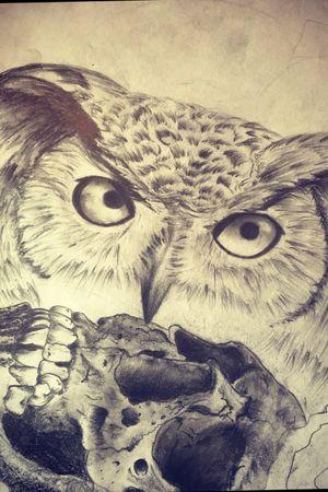 #owl #drawing #skull #realism