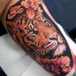 #TigerBlossom 🌸 . . . . . . #MrWhiteSnakeTattoo #Bakutattoo #tattoouk #art #tattoo #inked #tatuaz #portsmouth #southamptontattoo #southampton #portsmouthtattoo #poland #hampshiretattoo #tattooed #flowertattoo #animalportrait #electrumstencilprimer #tattoos #colourtattoo #colourrealism #tattoodesign #tattooidea #animalportrait #animaltattoo #flowers #tigertattoo #tiger