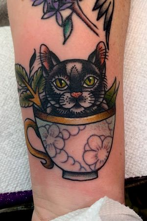 Traditional kitty cat in a teacup looking adorable
