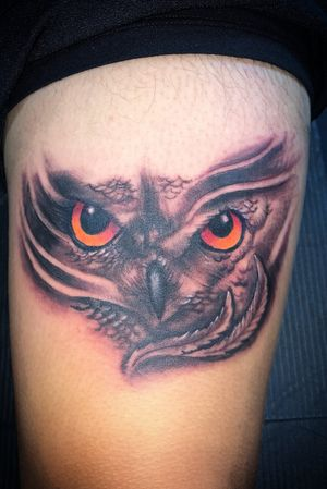 Owl tattoo on thigh done yesterday.