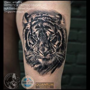Black and grey Tiger tattooed at Needle Art Tattoo (Netherlands). 😊🙏🏻 ARTISTICA TATTOO SINGAPORE 74A Dunlop Street #02-00 Singapore 209402 ☎️ +65 82222604 #tattoo #tattooed #tattoolovers #ilovetattoo #sgtattoo #singaporetattoo #singaporetattooartist #bodyart #nopainnogain #tiger #blackandgreytattoos #thightattoo #realistictattoo #guestspot #needlearttattoo #artistica #artisticatattoo #artisticasingapore #ericartistica #balmtattoo #balmtattoosg #balmtattoosingapore #balmtattooteamsg #balmtattooartist #dragonbloodbutter #quantumtattooink #nedzrotary #criticaltattoosupply #sparktattoocartridges