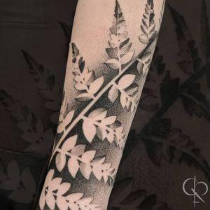 Fern forearm wrap #dotworktattoo #LineworkTattoos #BlackworkTattoos #floraltattoo