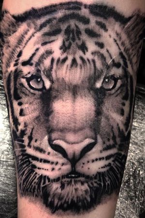 Tattoo from Shaun Loyer