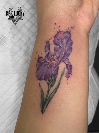 Flora Botanica . . . Breathtaking Iris done by Nikita Jade Morgan for @ambreburton. . . . WALK INS WELCOME or: Email: info@kakluckytattoos.com Call: 021 422-2963 . . . @flashheal @balmtattoonordic . . . #tattoos #art #capetown #kakluckytattoos #tattoo #tattooartist #tattoosofig #crispy #kloofstreet #southafrica #420 #tattoodo #tattooartist #tattoosofinstagram #tattoodude #balmtattooafrica #capetowntattoo #kaapstad #capetowntattoos #fresh #floraltattoo #watercolortattoo #beauty #flora #watercolortattoo